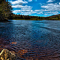 The Moose River In The Spring by David Patterson
