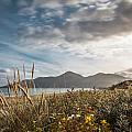 The Mourne Mountains  by George Pennock