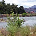The Naches River by Charles Robinson