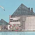 The National Aquarium by Calvert Koerber