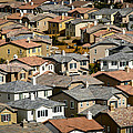 The Neighborhood by Cathy Smith