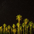 The Night Sky Over Death Valley by Martin Belan