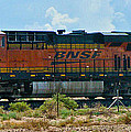 No. 7231 by Steve Purifoy