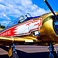 The North American T-6 Texan Airplane by David Patterson
