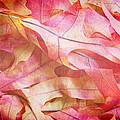 The Oak Leaf Pile by Heidi Smith