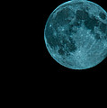 The Official Blue Moon Of 2013-august 20-21 by Eti Reid