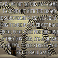 The Old Ballgame by Ricky Barnard