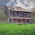 The Old Barn by Cheryl Cencich