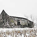 The Old Barn by John Kiss