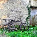The Old Bike In The Irish Countryside by Bill Cannon
