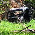 The Old Car by Susan Chesnut
