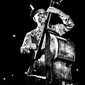 The Old Contrabass Player by Stwayne Keubrick