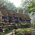The Old Cottage by MGL Meiklejohn Graphics Licensing