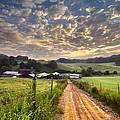 The Old Farm Lane by Debra and Dave Vanderlaan