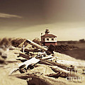 The Old Lighthouse by Micki Findlay