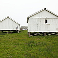 The Old Pierce Point Ranch At Foggy Point Reyes California 5d28140 by Wingsdomain Art and Photography