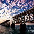 The Old Rail Road Bridge In The Florida Keys 2 by Susanne Van Hulst