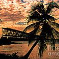 The Old Rail Road Bridge In The Florida Keys by Susanne Van Hulst