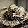 The Old Straw Hat by Terry Rowe