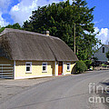 The Old Thatched Cottage by Joe Cashin