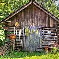The Old Tool Shed II by Lanita Williams