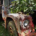 The Old Truck by Debra and Dave Vanderlaan