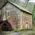 The Old Watermill by David Birchall