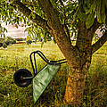 The Old Wheelbarrow by Debra and Dave Vanderlaan