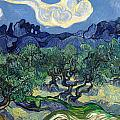 The Olive Trees by Vincent van Gogh