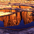 The Organ Reflection by Ray Mathis