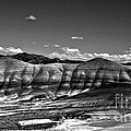 The Painted Hills Bw by Chalet Roome-Rigdon