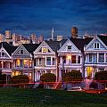 The Painted Ladies Of San Francsico by Linda D Lester