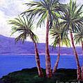 The Palms by Susan Plenzick