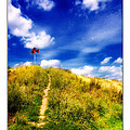 The Path by ARTSHOT - Photographic Art