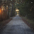 The Path by Terry DeLuco