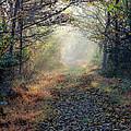 The Paulinskill Trail By James Figielski by Paulinskill River Photography
