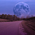 The Peace Moon  by Betsy Knapp