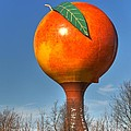 The Peach by Sonja Dover