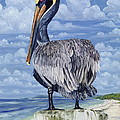 Pelican Perch by Danielle  Perry