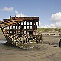 The Peter Iredale Shipwreck 2 Color by Michelle Torres