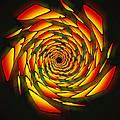 The Phi Stargate by Derek Gedney