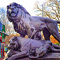 The Philadelphia Zoo Lion Statue by Bill Cannon