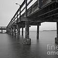 the Pier by Rod Wiens