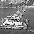 The Pier St Petersburg Fl by Bill Cobb