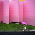 The Pink Color World by Tetsuya Hashimoto