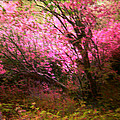 The Pink Forest by Absinthe Art By Michelle LeAnn Scott