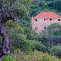 The Pink Fortress House In The Wood by Enrico Pelos