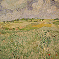 The Plain At Auvers by Vincent Van Gogh