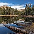The Pond At Dana Meadow by Peter Tellone