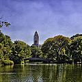 The Pond - Central Park by Madeline Ellis
